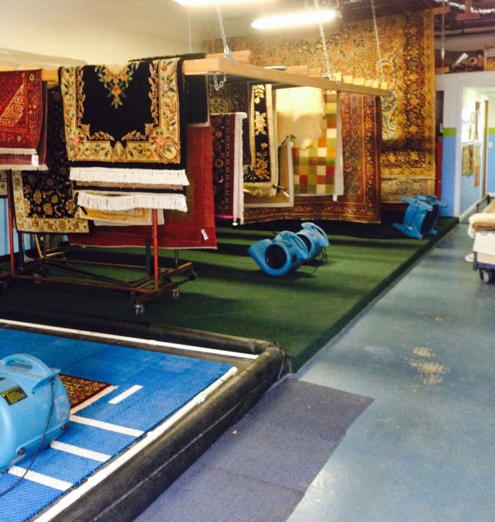 Oriental Rug Cleaning Training